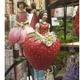 Idée-cadeau Montpellier : des Fées-fleurs à suspendre chez Images de Demain en centre-ville.(® images de demain)